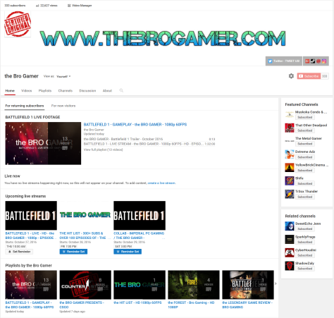 the-bro-gamer-youtube-333-subs