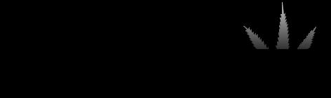 CANNILUX BLACK